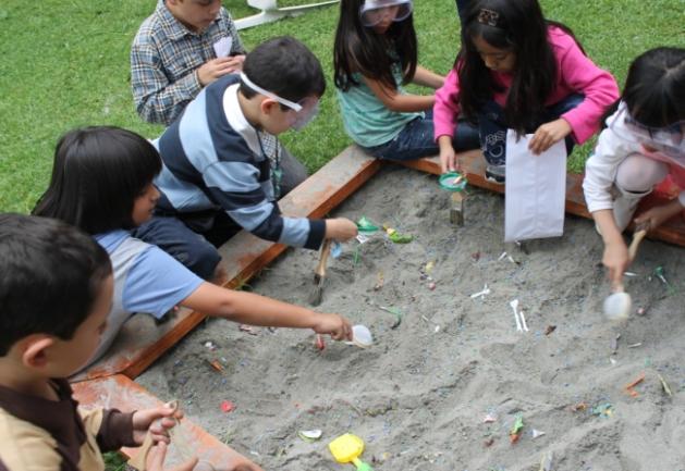 dinosaur bones hunt, excavation